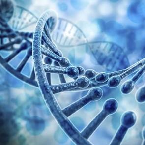 Bioética Personalista - Módulo 2 - Reprodução Assistida