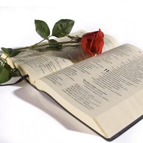 ministerio_de_pregacao_fundamento_biblico