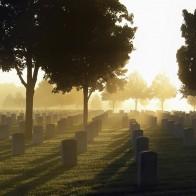 Entendendo a Vida e a Morte